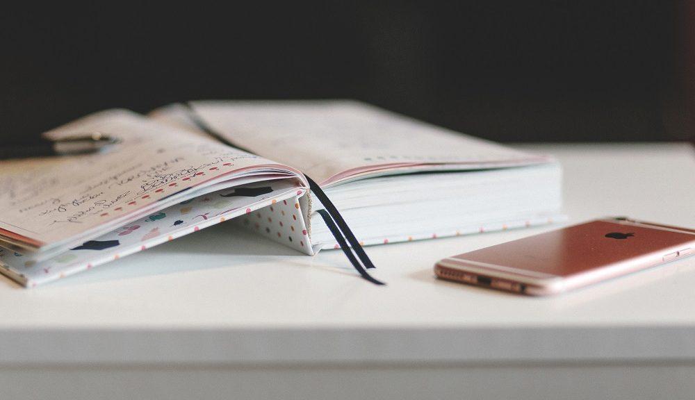 Beginner s Guide to the TOEFL Independent Essay   TOEFL Resources